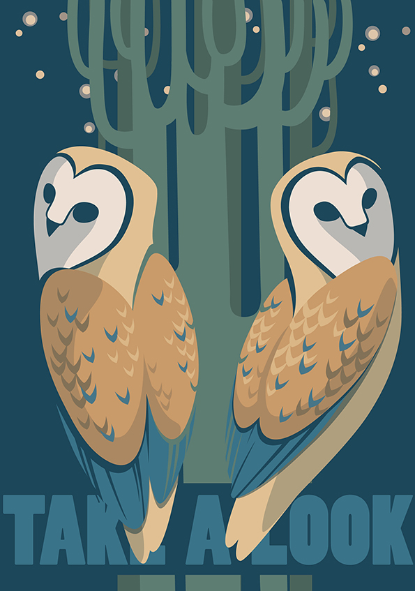 two barn owls in the night